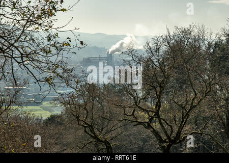 Industrial landscape. Scene of Trees and a Factory emitting smoke polluting the atmosphere. Pollution concept - Stock Photo