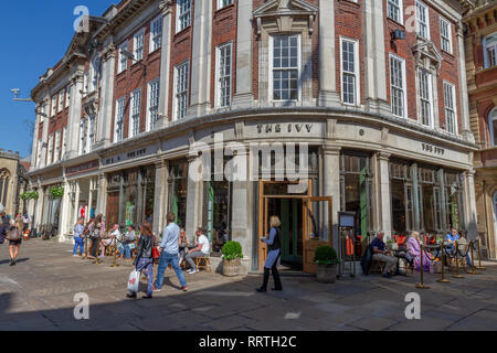The Ivy St Helen's Square in the City of York, North Yorkshire, UK. - Stock Photo