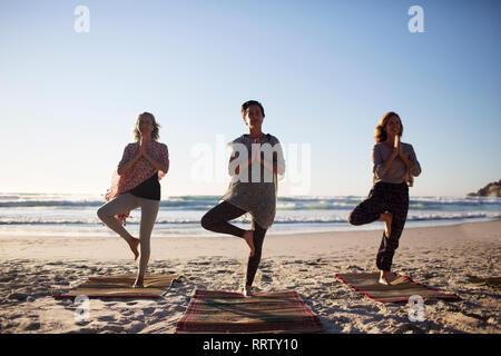 Serene women practicing yoga tree pose on sunny beach during yoga retreat - Stock Photo