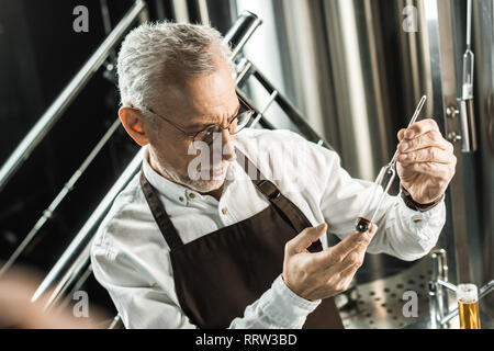 senior male brewer examining beer in flask in brewery - Stock Photo