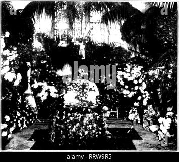 . Florists' review [microform]. Floriculture. Chapel Decorated by Berlerminn Bros. Co., for Funeral of Mrs. Fairbanks.. Please note that these images are extracted from scanned page images that may have been digitally enhanced for readability - coloration and appearance of these illustrations may not perfectly resemble the original work.. Chicago : Florists' Pub. Co - Stock Photo