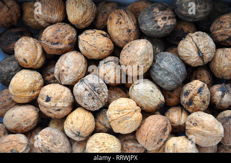 Several raw walnuts in the unpeeled shells, top view. - Stock Photo