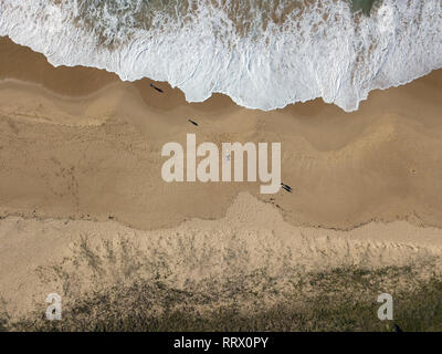 Australian beach and people landscape aerial view on sandy beach with waves and ocean crashing in. Bird's eye view captured with drone. - Stock Photo