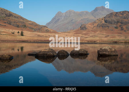 The Langdale Pikes reflected in Blea Tarn (close up), Lake District, UK