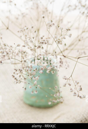 dried natural gypsophila baby's breath flowers simply arranged in handmade pale green pot against neutral hessian background - Stock Photo