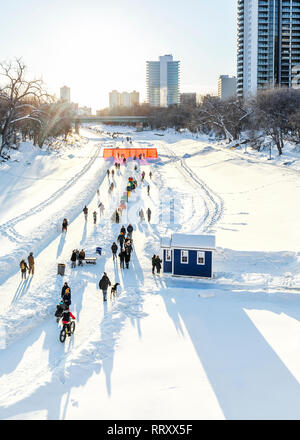Ice skaters, cyclists, dog walkers on the frozen Assiniboine River, part of the Red River Mutual Trail, The Forks, Winnipeg, Manitoba, Canada. - Stock Photo