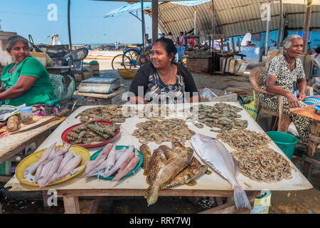 Women chat together as they sit behind their displays of fish for sale at the Negombo Fish Market at Negombo beach in the Western Provence of Sri Lank - Stock Photo