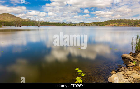 Dead Trees in a Lake - Stock Photo