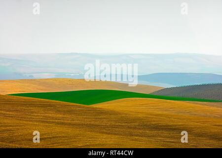Beautiful rural landscape outside Cordoba, Andalusia, Spain. - Stock Photo