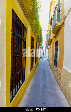 The picturesque and narrow street of Cordoba, Andalucia, Spain. - Stock Photo