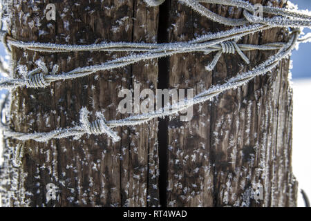A macro photo of hoar frost on barbed wire near Coeur d'Alene, Idaho. - Stock Photo