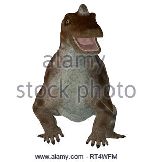 Keratocephalus dinosaur, front view. - Stock Photo