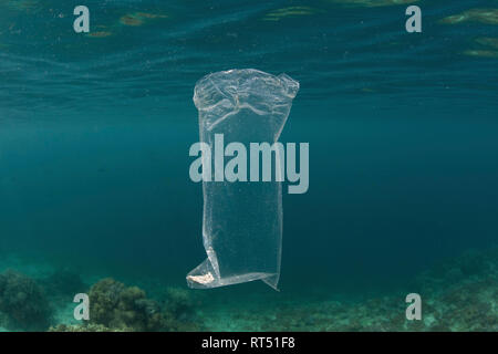 A discarded plastic bag drifts underwater amid the islands of Raja Ampat, Indonesia.