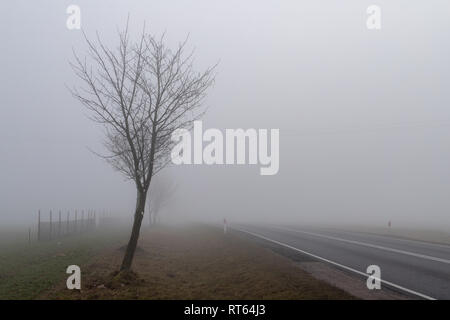Asphalt road in a big fog. Low visibility on a busy road in Central Europe. Season of the spring. - Stock Photo