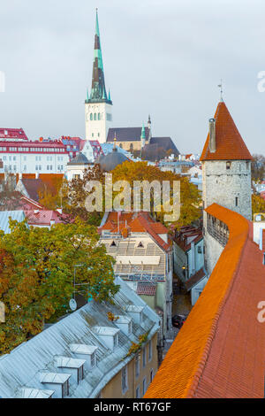 Europe, Eastern Europe, Baltic States, Estonia, Tallinn. old town, along the city walls. Roof tops. Skyline. St. Olaf's Church steeple. - Stock Photo