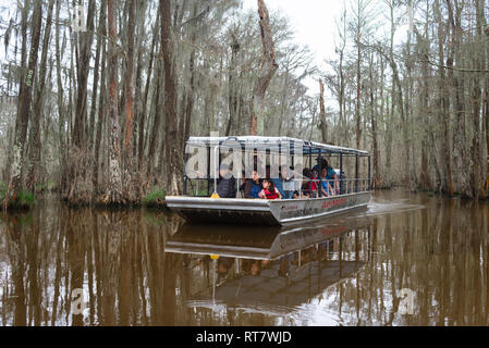 Louisiana swamp, view of tourists aboard a flat bottomed boat during a trip along the Pearl River in the Louisiana bayou, USA - Stock Photo