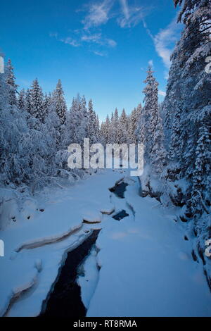 A natural river is flowing through a snow covered forest on a cold winter day in northern Sweden. - Stock Photo