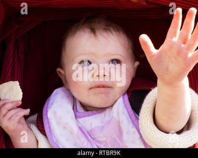 10 month old baby reaching out of pushchair, UK - Stock Photo