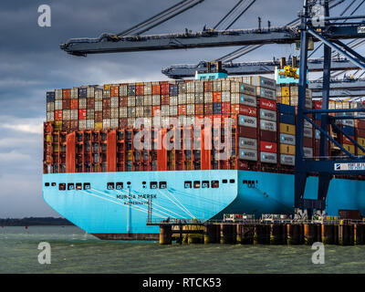 UK Foreign Trade - Shipping containers being loaded and unloaded from a Maersk ship in Felixstowe. UK's largest Container Port on the East coast - Stock Photo