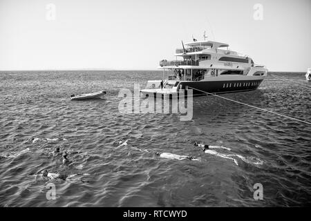 Hurghada, Egypt - February 24, 2017: group of people, adults and children, with diving masks and snorkels swimming underwater in blue sea. White ship and boat on clear sky. Idyllic summer vacation and activity - Stock Photo