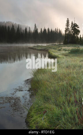 WA15841-00...WASHINGTON - Mist clearing in the early morning hours at Reflection Lakes in Mount Rainier National Park. - Stock Photo