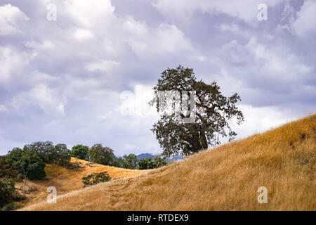 Changing weather at the beginning of October in Henry W. Coe Park State Park, California