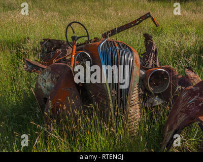 Wrecked derelict rusty rusting car, in long grass, Endeans Mill, Waimiha, Ongarue, King Country, New Zealand - Stock Photo
