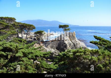 Coast view seen from 17 Mile Drive on highway 1 in Pebble Beach in California to the Pacific ocean, Lone Cypress, Monterey peninsula, conifers, waves - Stock Photo