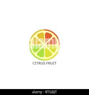 Citrus fruit icon. Lime, lemon, orange and grapefruit slices Vector illustration - Stock Photo