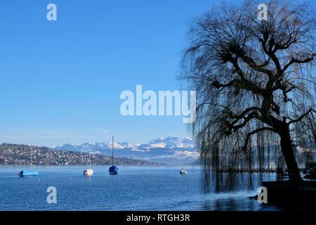 Blick Ÿber den ZŸrichsee mit Segelbooten auf die schneebedeckten Schweizer Alpen. - Stock Photo