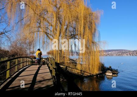 SpaziergŠngerin auf einer HolzbrŸcke am ZŸrichsee mit gelber Trauerweide. - Stock Photo