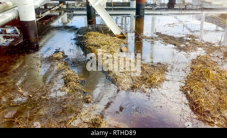 Spilled oil on sandy soil near pipelines and process equipment. Oil leaks during operation and repair - Stock Photo