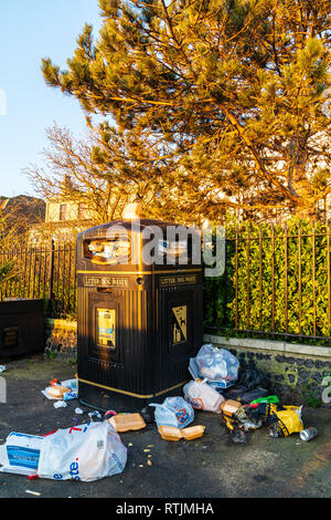 Overflowing rubbish bin on morning after a saturday night. Black large bin marked 'litter/dog waste' overflowing with tins and plastic food containers - Stock Photo