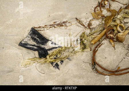 A discarded, sand-encrusted black rubber glove lies amid strands of kelp washed up on a remote, sandy beach on Canada's west coast (close-up view). - Stock Photo