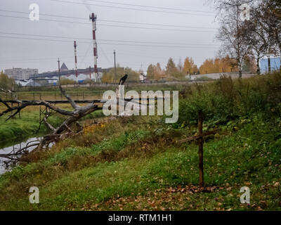 Cross grave stalker in the exclusion zone. Cross grave stalker in the exclusion zone. - Stock Photo