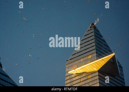 A flock of seagulls around 30 Hudson Yards, showing the cantilevered observation deck under construction, in Hudson Yards in New York on Tuesday, February 26, 2019. (© Richard B. Levine) - Stock Photo