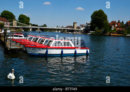 Hire boats moored on the bank of the River Thames in Marlow, Buckinghamshire, England, UK. Marlow Bridge in the distance. - Stock Photo