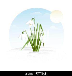 Snowdrop - minimalistic flat design vector illustration clipart - Stock Photo