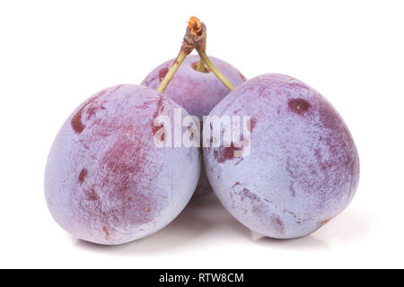 three plums isolated on white background - Stock Photo