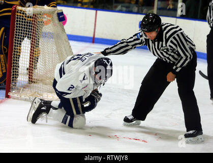 New Haven, CT, USA. 2nd Mar, 2019. March 2, 2019 - New Haven, Connecticut, USA: Referee checks on Yale #21 TYLER WELSH after things got rough during Quinnipiac's 4-1 win, which clinched the Bobcats regular season championship, and makes them the No. 1 overall seed in the 2019 ECAC Hockey Tournament. Games between the two schools, who are 8 miles from each other in Connecticut, have been a heated rivalry since to two teams played for a national championship in 2013, which was won by Yale 4-0. Stan Godlewski/ZUMA Press Credit: Stan Godlewski/ZUMA Wire/Alamy Live News - Stock Photo