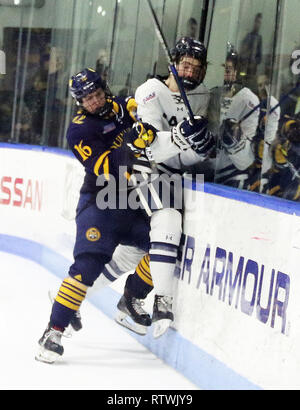 New Haven, CT, USA. 2nd Mar, 2019. March 2, 2019 - New Haven, Connecticut, USA: Quinnipiac #16 WILLIAM FALLSTROM introduces Yale #15 KYLE JOHNSON to the boards during Quinnipiac's 4-1 win over Yale, which clinched the Bobcats regular season championship, and makes them the No. 1 overall seed in the 2019 ECAC Hockey Tournament. Games between the two schools, who are 8 miles from each other in Connecticut, have been a heated rivalry since to two teams played for a national championship in 2013, which was won by Yale 4-0. Stan Godlewski/ZUMA Press Credit: Stan Godlewski/ZUMA Wire/Alamy Live News - Stock Photo