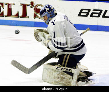 New Haven, CT, USA. 2nd Mar, 2019. March 2, 2019 - New Haven, Connecticut, USA: Yale goaltender SAM TUCKER makes a save during Quinnipiac's 4-1 win, which clinched the Bobcats regular season championship, and makes them the No. 1 overall seed in the 2019 ECAC Hockey Tournament. Games between the two schools, who are 8 miles from each other in Connecticut, have been a heated rivalry since to two teams played for a national championship in 2013, which was won by Yale 4-0. Stan Godlewski/ZUMA Press Credit: Stan Godlewski/ZUMA Wire/Alamy Live News - Stock Photo