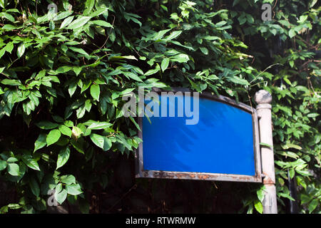 Empty Street Name Sign in Chengdu China in front of Bushes and Plants Trees. - Stock Photo
