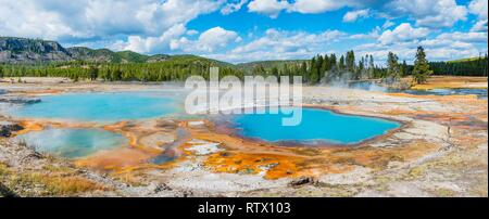 Black Opal Pool, Hot Spring, Yellow Algae and Mineral Deposits, Biscuit Basin, Yellowstone National Park, Wyoming, USA