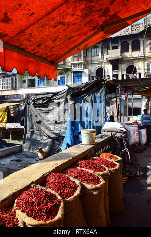 Sacks of red chillies, Khari Baoli,  Bustling Indian Wholesale Spice Market, Old Delhi, India - Stock Photo