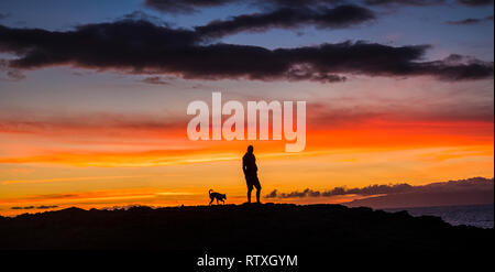 Man standing in the sunset with best friend dog animal with him - friendship and romantic outdoor leisure activity for people - colors and red clouds  - Stock Photo