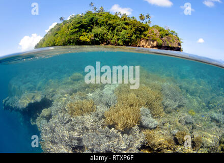 View of the coral reef around Nukuatea Motu, Wallis Island, Wallis and Futuna, South Pacific - Stock Photo
