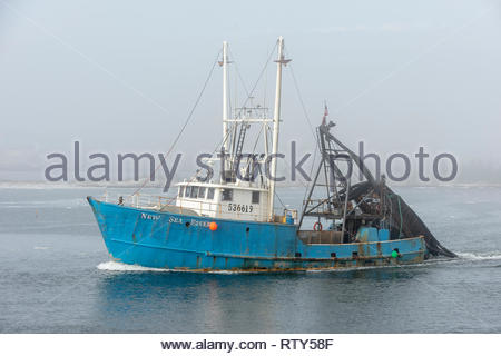 New Bedford, Massachusetts, USA - February 5, 2019: Clammer New Sea Rover passing Palmer Island in New Bedford harbor on foggy winter morning - Stock Photo
