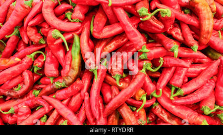 Top view on red pointed peppers displayed in food market - Stock Photo