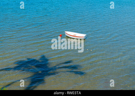 Palm tree casts shadow over water with small white dinghy afloat on blue water - Stock Photo